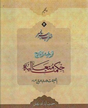 شراب سر به مهر(ترجمه و شرح حکمت متعالیه) جلد7